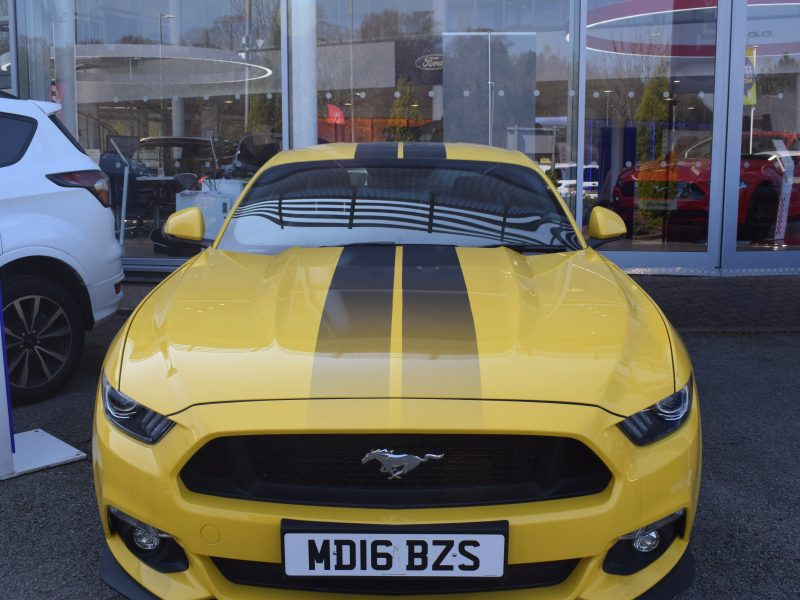 Ford Mustang – Custom Stripes